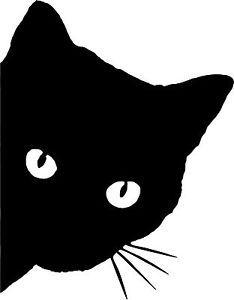 -<b>Cat</b>-<b>Face</b>-with-Whiskers-Peeking-Around-the-Corner-Vinyl-car-<b>cutout</b> ...