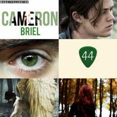 Fallen Series, Fallen Book, Fallen Angels, Cameron Briel, Jeremy Irvine, Lauren Kate, Sad Movies, Autumn Lights, Fantasy Books