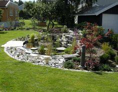 petit étang de jardin avec des plantes aquatiques à côté du parterre d'arbustes et graminées