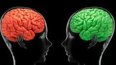 Hallan el lugar exacto del cerebro donde se origina el amor