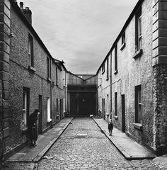 Ирландский фотограф Ален Макуини 31