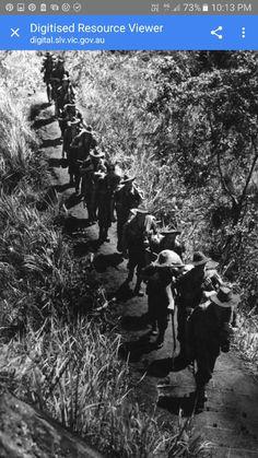 Shaggy ridge  around  orgoruna area returning Australian soldiers possibly 2/31st infantry battalion   Going back to kumbarum