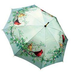Hautmans Cardinals Stick Umbrella - cannot find this anywhere :-( Umbrella Painting, Folding Umbrella, Rain Umbrella, Under My Umbrella, Cool Umbrellas, Umbrellas Parasols, Its Raining Its Pouring, Vintage Umbrella, Fancy Umbrella