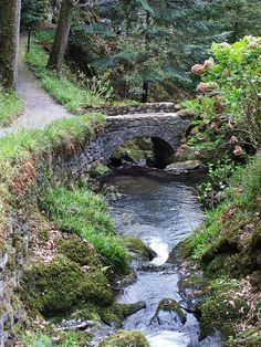 Stone Bridge and Path at Bodnant Gardens, North Wales. Snowdonia, Anglesey, North Wales, Wales Uk, Garden Stones, English Countryside, The Great Outdoors, Places To See, Beautiful Places