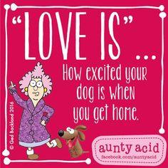 #AuntyAcid love is
