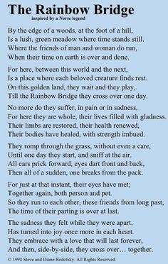 The Rainbow Bridge ~ Inspired by a Norse Legend. Made me cry to think of my fur babies that have already crossed the rainbow bridge. Souvenir Animal, Rainbow Bridge Dog, Rainbow Bridge Quotes, Pet Poems, Der Boxer, Pet Loss Grief, Pet Remembrance, Vida Natural, Losing A Pet