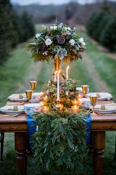 Blue and green outdoor winter tablescape - Isa Images