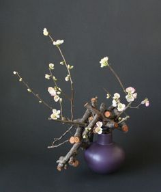 """Hana dome- cherry and quince branches - Need to understand """"Hana dome"""".  Time for a little more research!  :-)"""