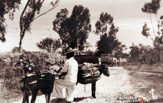 Aspecto tipico hacia 1930-1950. Guadalajara, Jalisco, México. Cortesía: www.MexicoEnFotos.com (Mexico)