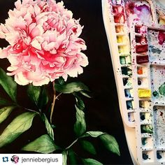 Floral artwork by watercolor artist @jenniebergius - #inspiringpieces Talent Pool   #flowers #nature #flower #art #colors #pink #watercolor #inspiration #inspirational