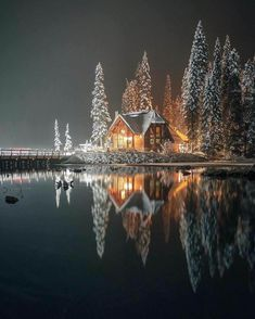 Reflection Photos, Winter Cabin, Wattpad, Winter Scenery, Forest House, Good Books, Bing Images, Art Projects, Beautiful Places