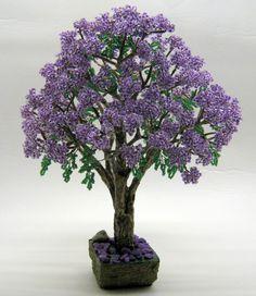 Жакаранда, фиалковое дерево.