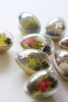 How to make Easter egg terrariums - The House That Lars Built