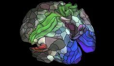 지금까지 나온 가장 정확한 '뇌지도' -테크홀릭 http://techholic.co.kr/archives/57570