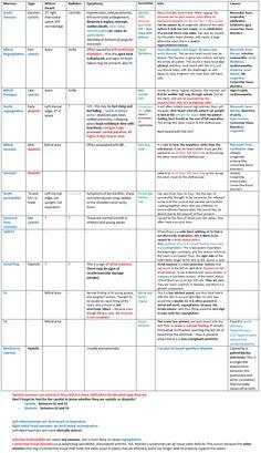 murmur summary - awesome!