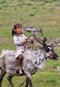 His tribe has been recorded as domesticating their reindeer for the last 4,000 years. Description from pinterest.com. I searched for this on bing.com/images