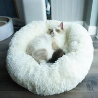 Our furry friends need their own special snuggle place to feel comfy, cozy and loved. Treat your most beloved companion to a little luxury with our Comfy Faux Fur Pet Bed. Made of durable nylon, this pet bed is soft and luxurious, as well as practical Cool Beds, Pet Beds, Beds For Cats, Little Dogs, My New Room, Snuggles, Your Pet, Bean Bag Chair, Faux Fur