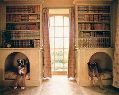 Außergewöhnlicher Hundeschlafplatz - Hundebett im Bücherregal