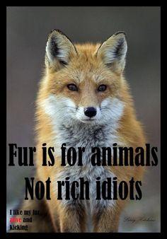 I like my fur alive and kicking!