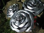 using soda cans for metal roses