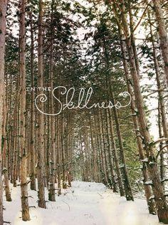 snowshoe adventure  |  The Fresh Exchange