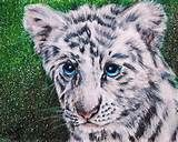great artist painted this Big Cats, Cat Art, Great Artists, Fantasy Art, Drawings, Tiger Cubs, Painting, Animals, Google Search
