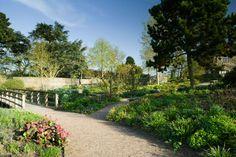 RHS Garden Hyde Hall - The Robinson Garden in spring.