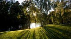 Im Schweizergarten gleich beim Sino Spa können Sie auch spazieren gehen und entspannen. Parks, Country Roads, Switzerland, Lawn And Garden, Parkas