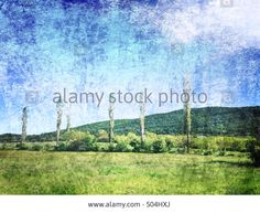 A lonely trees, Near Plovdiv,Bulgaria Stock Photo