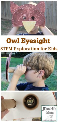 Owl Eyesight - STEM Exploration for Kids - You can build the viewer for you children or have them built it themselves. Also has further activities at the bottom. Owl Activities, Nature Activities, Steam Activities, 3 5 Year Old Activities, Camping Activities, Owl Preschool, Preschool Science, Toddler Preschool, Owls Kindergarten