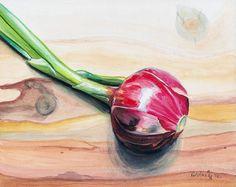 Farmers Market Onion  ORIGINAL watercolor by by Redstreake on Etsy, $199.00