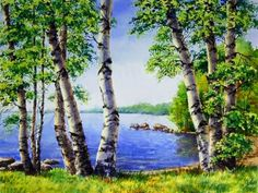 Kits Broderie diamants, Diamond Painting kits complet carrés de paysages. | C.S.M Waterfall Drawing, Forest Scenery, Cross Stitch Art, Artwork Images, Diamond Art, Toscana, Learn To Paint, Beautiful Landscapes, Lovers Art