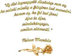 Nelson Mandela, Nom Nom, Let It Be