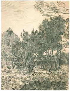 Pine Trees near the Wall of the Asylum by Vincent Van Gogh  Drawing, Reed pen Saint-Rémy: November, 1889