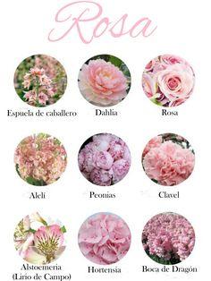 Flores de color rosa claro. Tonos suaves. Light pink flowers. Soft tones.