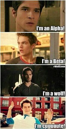 Uploaded by Hélène. Find images and videos about funny, teen wolf and dylan o'brien on We Heart It - the app to get lost in what you love. Stiles Teen Wolf, Teen Wolf Boys, Teen Wolf Dylan, Teen Wolf Cast, Teen Wolf Derek Hale, Teen Wolf Stydia, Teen Wolf Memes, Teen Wolf Quotes, Teen Wolf Funny