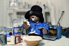 Paddington the bear does love good quality home cooking! www.t-booth.net