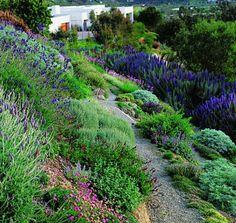 Hillside landscaping idea