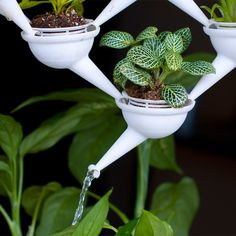 "Mini modular ""Aqueduct"" planters are 3D printed for windows : TreeHugger"