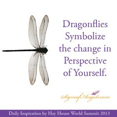 Dragonflies Symbolize the change in Perspective of Yourself. (HAY HOUSE WORLD SUMMIT 2013 Register for FREE TODAY! http://www.hayhouseworldsummit.com/?a_aid=51523c2e56e84_bid=ecb80d1a)