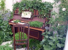 RHS Chelsea piano tuin melodie