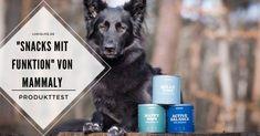 """LokisLife   Hundeblog LokisLife   Hundeblog - Ein deutschsprachiger Blog über das Leben mit einem Hund aus dem Auslandstierschutz. Leser finden hier unter anderem DIYs, Literaturtipps, Produkttests, Empfehlungen und Tipps zur Hundeerziehung. Den Hund verwöhnen und gleichzeitig etwas für seine Gesundheit tun? Klingt fast zu gut um wahr zu sein. Wir haben die mammaly-Snacks getestet. Der Beitrag Produkttest: Unsere Erfahrungen mit den """"Snacks mit Funktion"""" von mammaly erschien zuerst auf LokisLife Arthritis, Happy, Blog, Dog Training Tips, Dog Food, Life, Health, Ser Feliz, Blogging"""