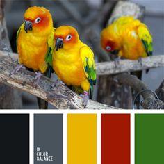 amarillo soleado, amarillo vivo, amarillo y verde, color galleta, color tropical, color verde hierba, colores de una ave tropical, elección del color, gris oscuro, tonos grises, verde.