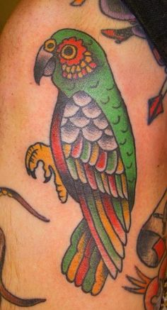 Google Image Result for http://www.toptattoopics.com/images/uploaded_images/pic/ab25de880c8f1ef3e77682b5cac27562__parrot%2520tattoo.jpg