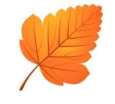 "Photo from album ""Осень"" on Yandex. Stencil, Fallen Book, Fall Nail Art, Autumn Activities, Leaf Art, Tropical Leaves, Leaf Design, Vintage Flowers, Autumn Leaves"