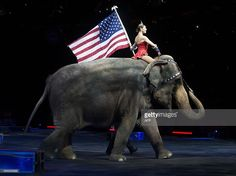 Sexy Woman riding bareback barefoot on an Elephant in the Circus/Sexy Frau reitet sattelos barfuß auf einem Elefant im Zirkus . A sexy female performer rides an elephant holding a US national flag uring a Ringling Bros. and Barnum & Bailey Circus performance in Washington, DC on March 19, 2015.