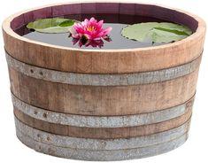 Buxus Sempervirens, Acer Palmatum, Heuchera, Decor, Amazon, Sport, Wine Cask, Water Fountains, Planting