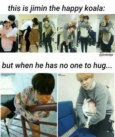 K-pop memes (mostly BTS memes) Koala Meme, Funny Koala, Funny Animals, Bts Boys, Bts Bangtan Boy, Bts Jimin, K Pop, Yoonmin, Sehun