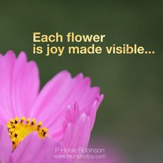 Each flower is joy made visible...P Hosie Robinson