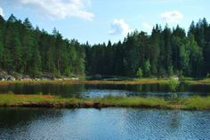 Nuuksio National Park pictures: Check out TripAdvisor members' 156 candid photos and videos of Nuuksio National Park in Espoo, Uusimaa. Park Pictures, Tour Tickets, Helsinki, Finland, Trip Advisor, Traveling By Yourself, Cruise, National Parks, Tours